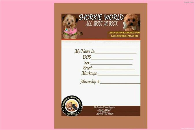 /images/puppies/large/24each-baby-comes-with-their-own-personalize-book_swbook.jpg