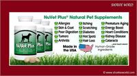 /images/puppies/large/25order-nuvet-vitamins--call-1-800-474-7044-order-code-44856_nuvet.jpg